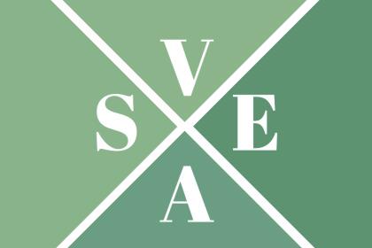 VASE_logo_resizedforribbon